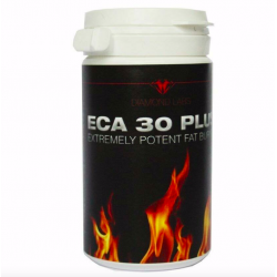 Diamond Labs ECA30